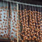 干し柿の保存方法と賞味期限は?